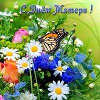 Фото открытка ко дню матери