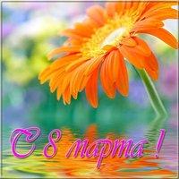 Фото открытки на 8 марта