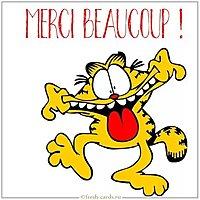 Image Merci Beaucoup Drole