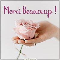 Image Merci Beaucoup
