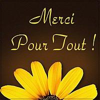 Image Merci Pour Tout