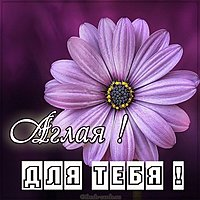 Картинка Аглая для тебя
