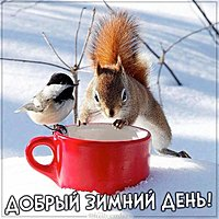 Картинка добрый зимний день