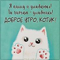 Картинка доброе утро котик любимому