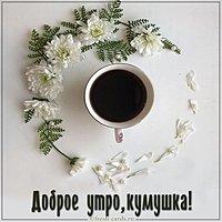 Картинка доброе утро кумушка