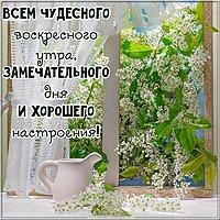 Картинка доброго воскресного дня красивая