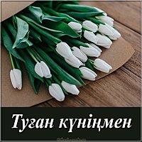 Картинка с днем рождения на казахском