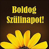 Картинка с днем рождения на венгерском языке