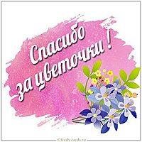 Картинка спасибо за цветочки