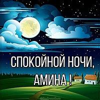Картинка спокойной ночи Амина