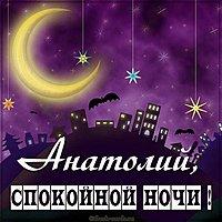 Картинка спокойной ночи Анатолий