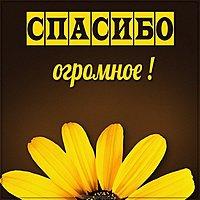 Картинка цветы спасибо огромное