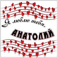 Картинка я люблю тебя Анатолий