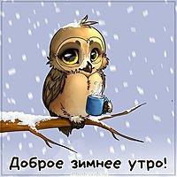 Картинка зимнее доброе утро