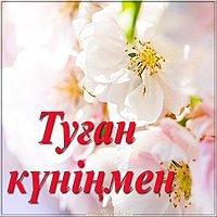 Красивая картинка с днем рождения на казахском