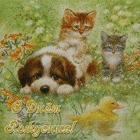 Красивая открытка с днём рождения с животными