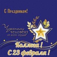 Красивая открытка с праздником 23 февраля коллегам