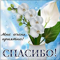 Красивая открытка спасибо мне очень приятно