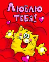 Люблю тебя котька