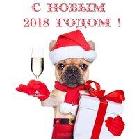 Открытка 2018 год собаки