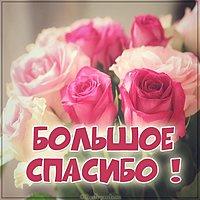 Открытка большое спасибо с цветами