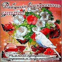 Открытка доброго весеннего воскресного утра и дня