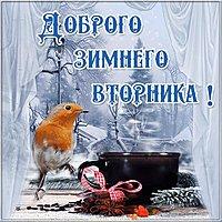 Открытка доброго зимнего вторника
