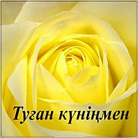 Открытка с днем рождения девушке на казахском