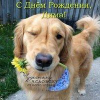 Открытка с днем рождения Дмитрий прикольная