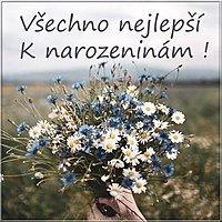 Открытка с днем рождения на чешском языке