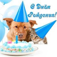 Открытка с днем рождения с животными