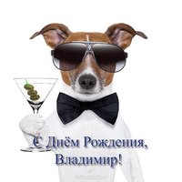 Открытка с днем рождения Владимир