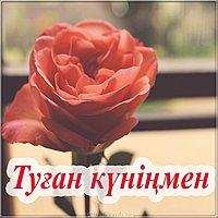 Открытка с днем рождения женщине на казахском