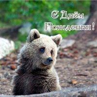 Открытка с днём рождения медвежонок