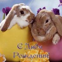 Открытка с днём рождения с кроликом