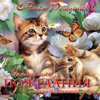 Открытка с днём рождения женщине с котятами
