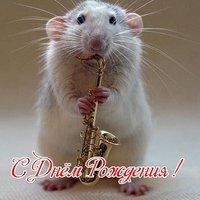 Открытка с мышками с днем рождения