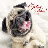 Открытка с новым годом годом собаки фото