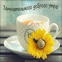Открытка замечательного доброго утра