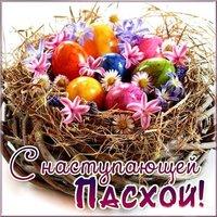 Пасха яйца картинка
