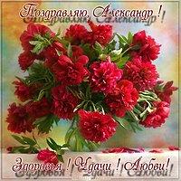 Поздравление Александру открытка