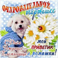 Поздравление с днем рождения племяннице открытка