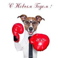 Прикольная открытка год собаки