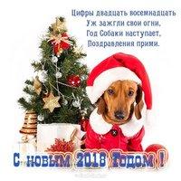 Прикольная открытка к году собаки