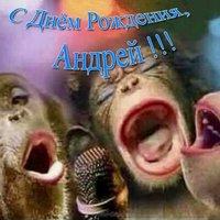 Прикольная открытка с днем рождения Андрей