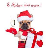 Прикольная открытка с годом собаки