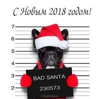 Прикольная открытка в год собаки
