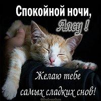 Прикольная смешная картинка спокойной ночи Алсу