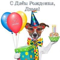 С днём рождения Дима прикольная открытка