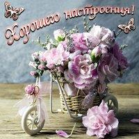 Шикарный букетик цветов